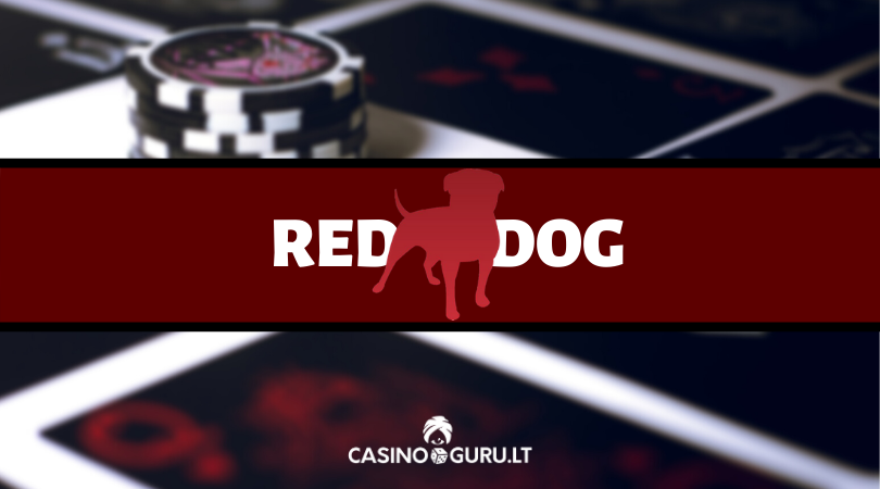 red dog online casino poker game