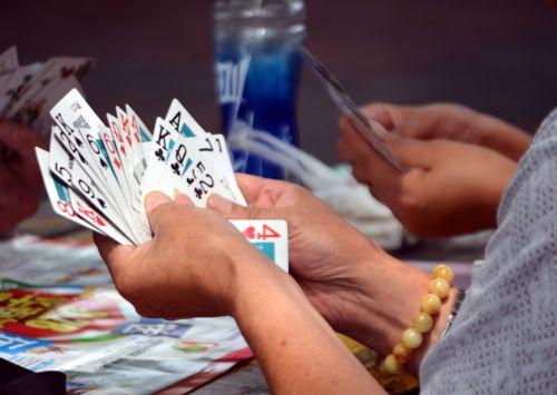 žaidimai kortomis_vežimas_kortų lošimas_kortų žaidimai kompanijai